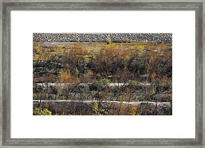 Santa Ana River Bed Framed Print
