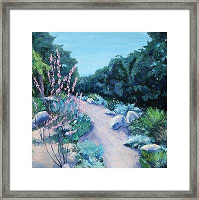 Santa Barbara Botanical Gardens Framed Print by M Schaefer