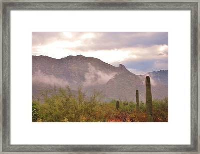 Santa Catalina Mountains II Framed Print