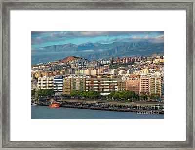 Santa Cruz De Tenerife Framed Print by Brian Jannsen