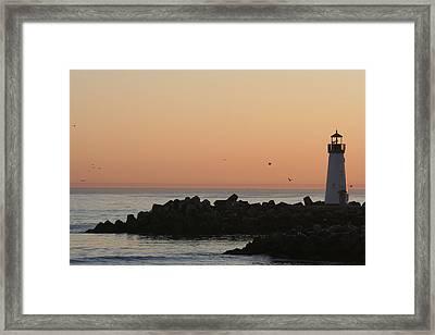 Santa Cruz Harbor Lighthouse Framed Print