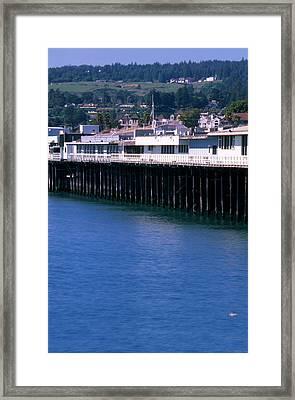 Santa Cruz Pier Framed Print by Soli Deo Gloria Wilderness And Wildlife Photography