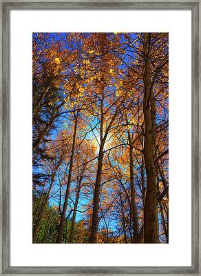 Framed Print featuring the photograph Santa Fe Beauty II by Stephen Anderson
