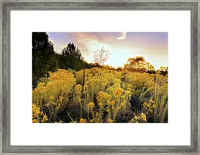 Santa Fe Magic Framed Print by Stephen Anderson