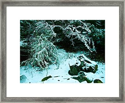 Santa Fe Snow Framed Print by Chuck Taylor