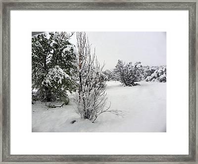 Santa Fe Snowstorm 2017 Framed Print by Joseph Frank Baraba