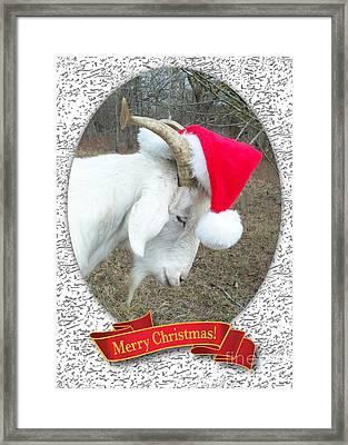 Santa Goat Framed Print