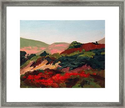 Santa Maria Hills Framed Print by Deborah Hildinger