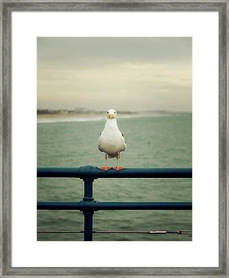 Framed Print featuring the photograph Santa Monica by Lucian Capellaro