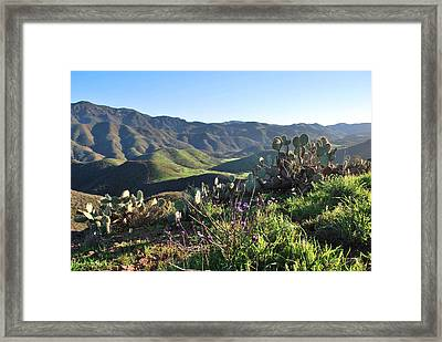 Framed Print featuring the photograph Santa Monica Mountains - Cactus Hillside View by Matt Harang