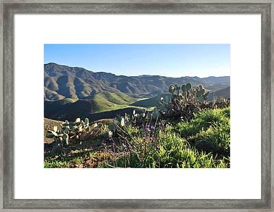 Santa Monica Mountains - Cactus Hillside View Framed Print