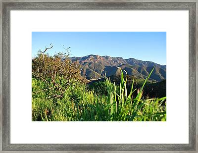 Framed Print featuring the photograph Santa Monica Mountains Green Landscape by Matt Harang