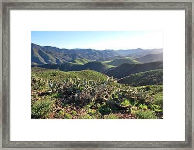 Santa Monica Mountains - Hills And Cactus Framed Print