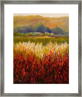 Santa Rosa Valley Framed Print