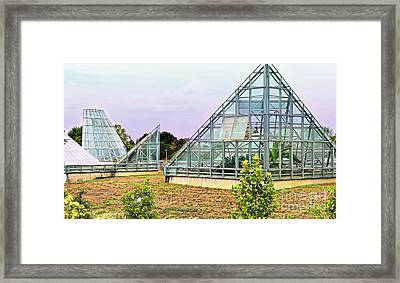 Saolariums At San Antonio Botanical Gardens Framed Print