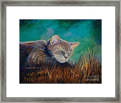 Saphira's Lawn Framed Print