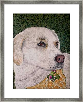 Sara Framed Print by David  Horning