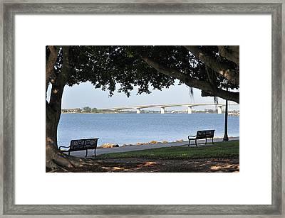 Framed Print featuring the photograph Sarasota Life 03 by John Knapko