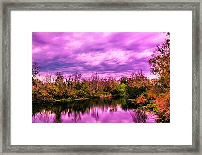 Framed Print featuring the photograph Sarasota Symphony 2 by Madeline Ellis