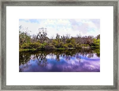 Framed Print featuring the photograph Sarasota Symphony  by Madeline Ellis