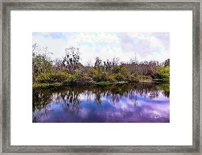 Sarasota Symphony  Framed Print