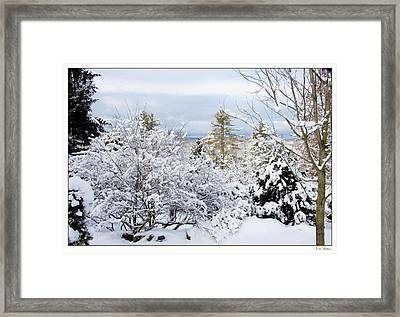 Saratoga Winter Scene Framed Print by Lise Winne