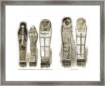 Sarcophagi And Egyptian Mummies Framed Print by Wellcome Images
