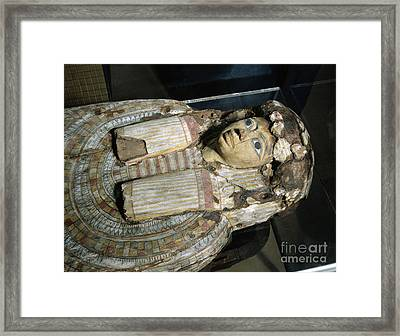 Sarcophagus Of Egyptian Mummy, 323 Framed Print by Wellcome Images