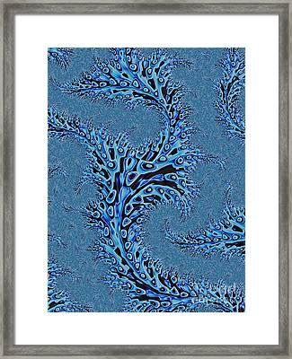 Sargasso Framed Print