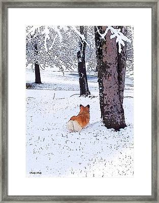 Sasha In The Snow Framed Print