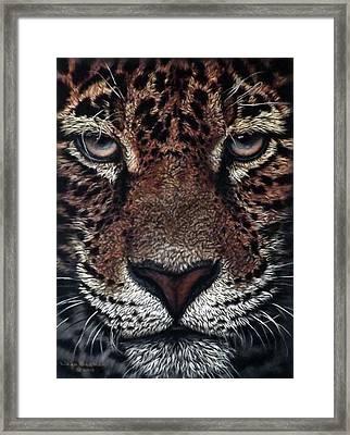 Sasha Framed Print