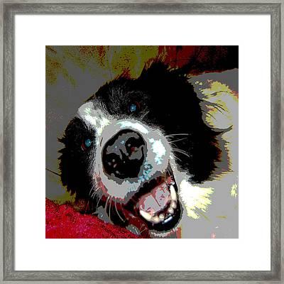Sassy Framed Print by Audrey Venute