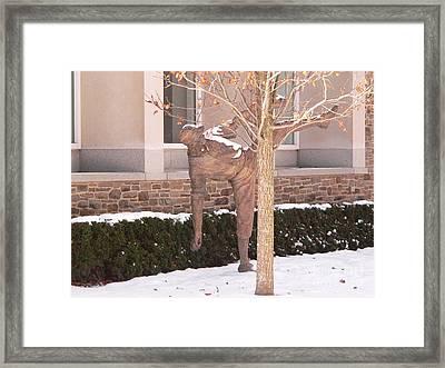 Satchel Paige Framed Print by David Bearden