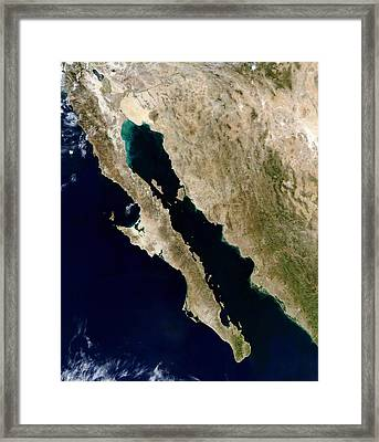 Satellite View Of The Gulf Of California Framed Print