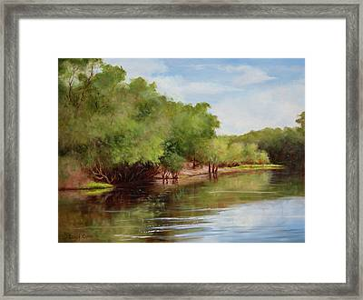 Satilla River Framed Print