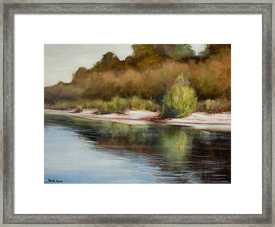 Satilla River Reflections Framed Print