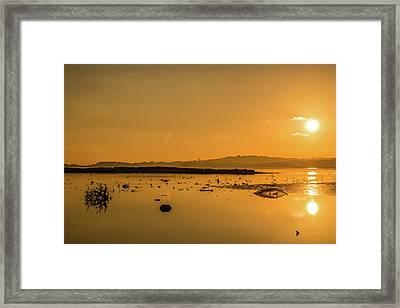 Saturday Morning Along The Estuary  Framed Print