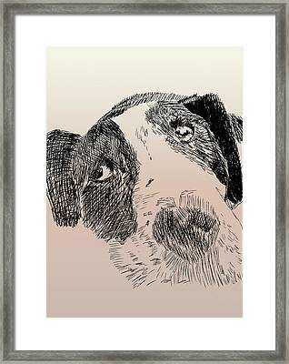 Saturday Morning Framed Print by Robbi  Musser