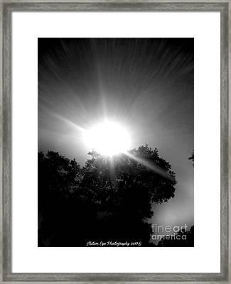 Saturday Sunshine On A Charleston Morning Framed Print