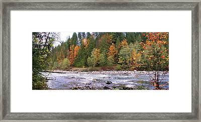 Sauk River Fall Colors Panorama Framed Print by Mary Gaines