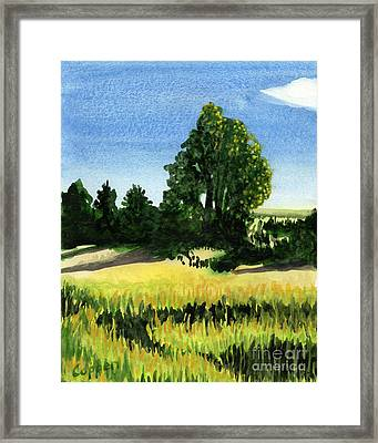 Sauquoit Creek Shadows Framed Print by Robert Coppen