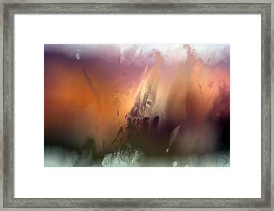 Master Of Illusions Framed Print