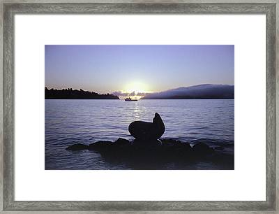 Sausalito Morning Framed Print