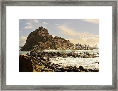 Savage Framed Print by Oscar Moreno