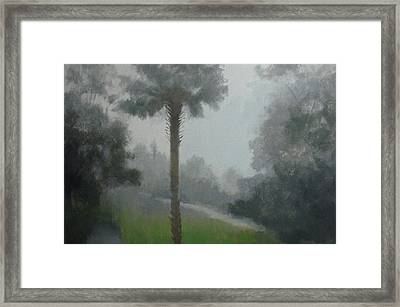 Savanna Fog Framed Print by Robert Rohrich