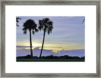 Savanna Sunrise Framed Print