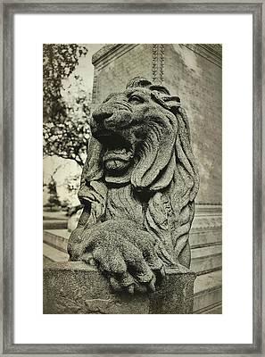 Savannah Protector Framed Print by JAMART Photography