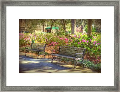 Savannah In Springtime Framed Print