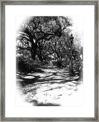 Savannah Sidewalk Black And White Framed Print by Carol Groenen