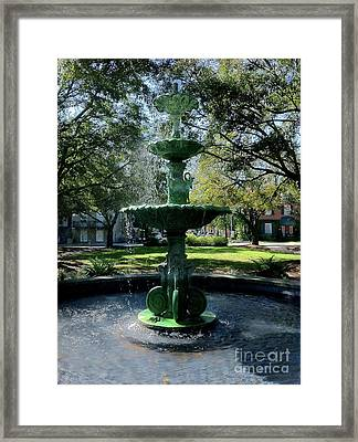 Savannah Splash Framed Print by Carol Groenen